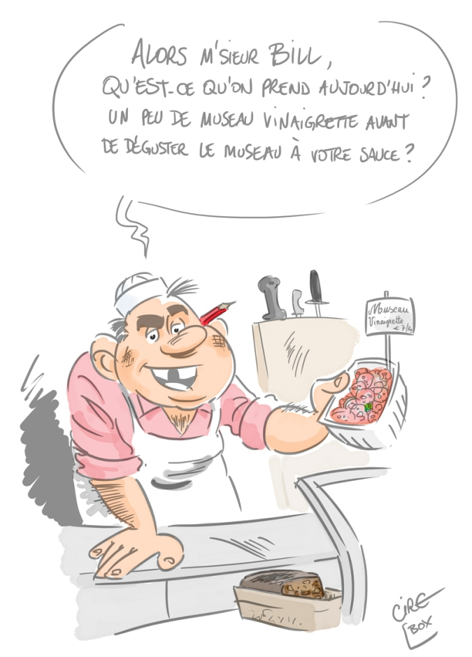 Cartoon Museau BILL copie